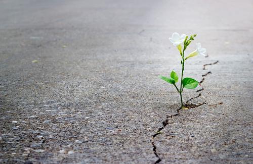 Speranza: i pensieri di Giuseppe Merlo